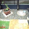 庭の雨水升まわり(西側)