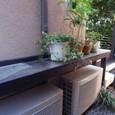 花鉢用の棚