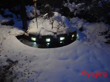 雪の中の池