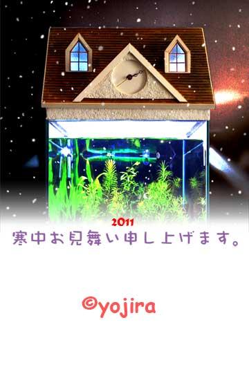 2011kanchumimai_2